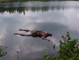 ইছামতি নদীতে ভাসমান অজ্ঞাত মৃতদেহটি ভারতের