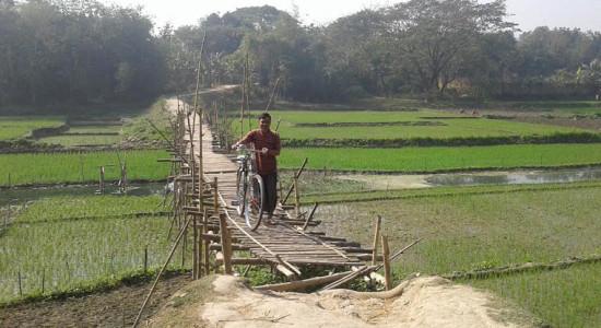 তত্বিপুর বাজারে চিত্র নদীর সাকো দিয়ে ২২ গ্রামের মানুষ চলাচল